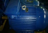 Электродвигатель АИР 250 S8 (55 кВт 750 об/мин)