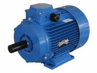 Электродвигатель АИР 160 М4 (18,5 кВт 1500 об/мин)
